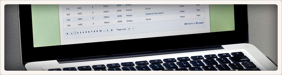 intBanner-computer
